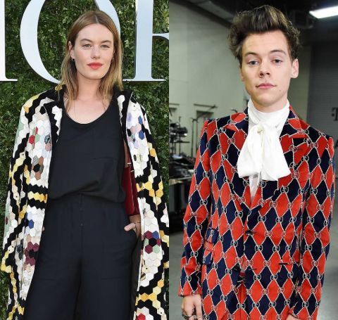 """Camille Rowe is in a romantic relationship with the famous artist Harry Styles former member of the popular band """"One Direction."""""""