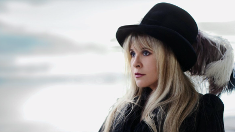 Steve Nicks has a net worth collection of $85 million